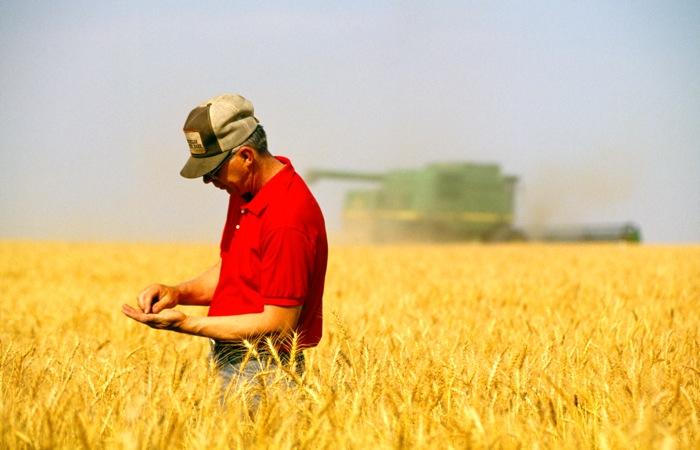 農業用地貸款
